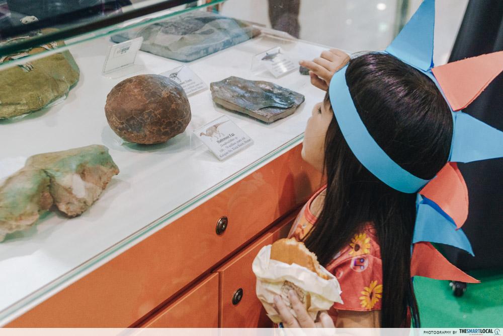 prehistoric fossil dinosaur exhibition