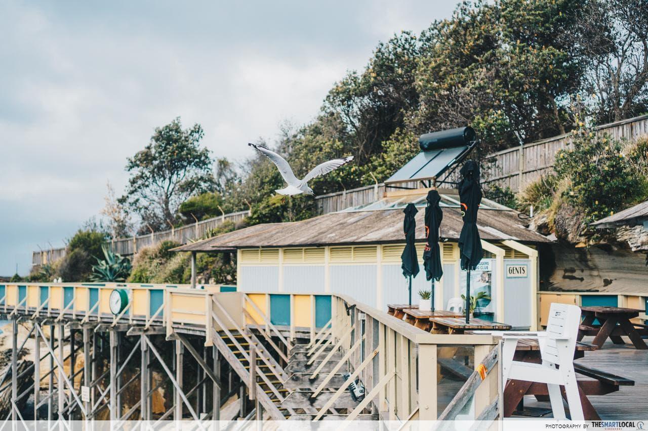 wylie's baths pool deck
