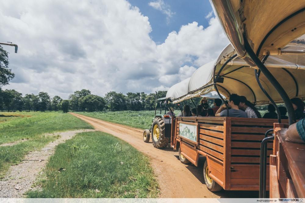 farm chokchai tram