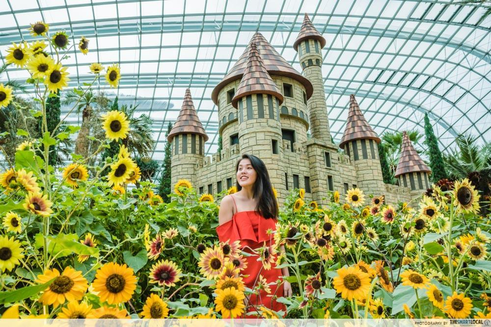 Sunflower Surprise Gardens by the Bay - castle wizard of oz cover image