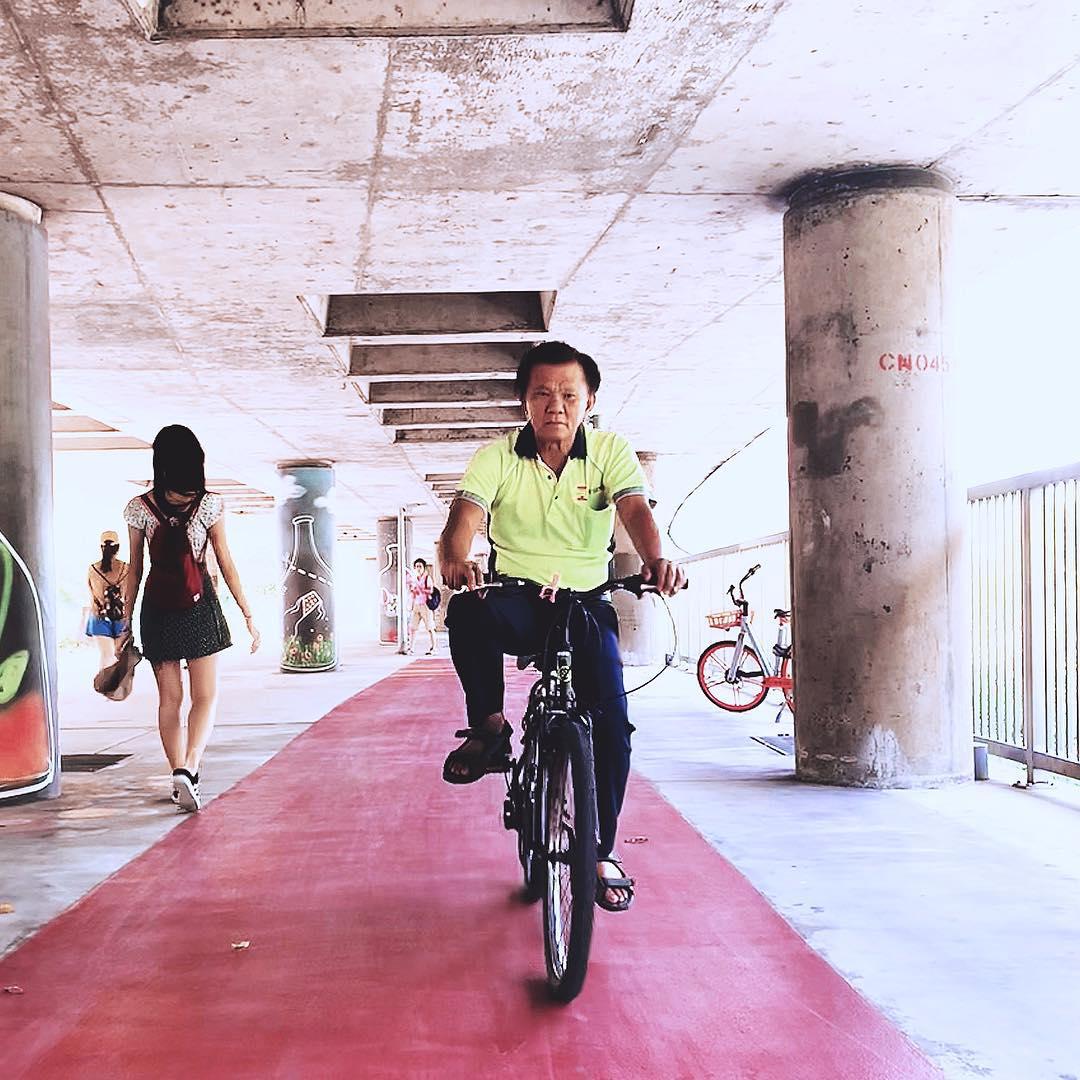 pcn cyclist
