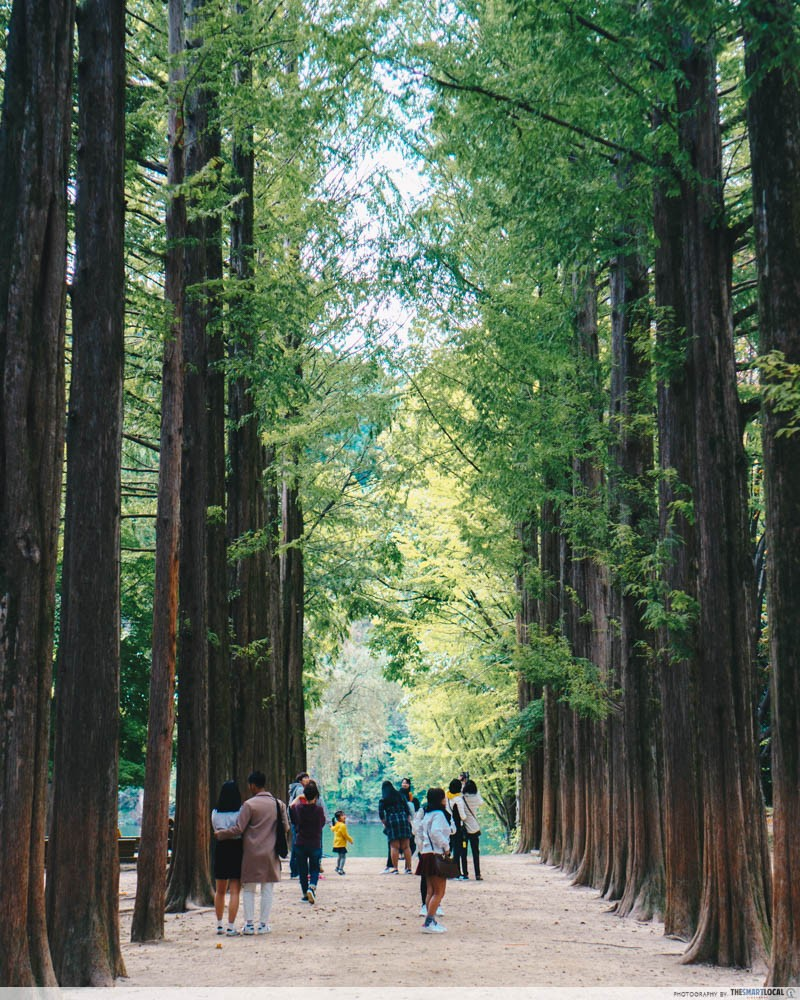 12 New Things To Do In Seoul, Busan & Gangwon-do Away From The