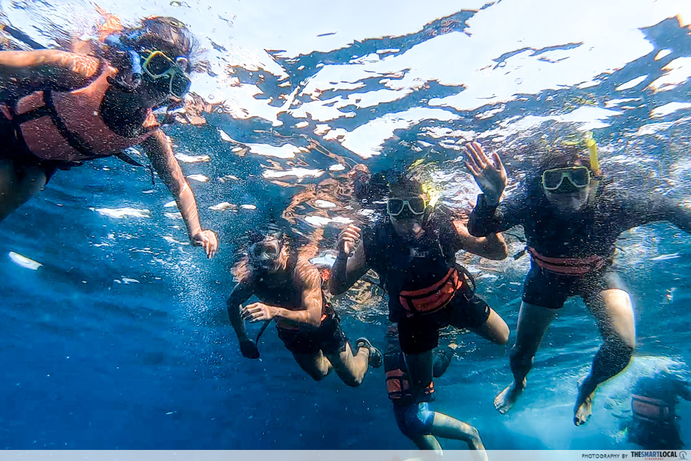 moalboal snorkelling