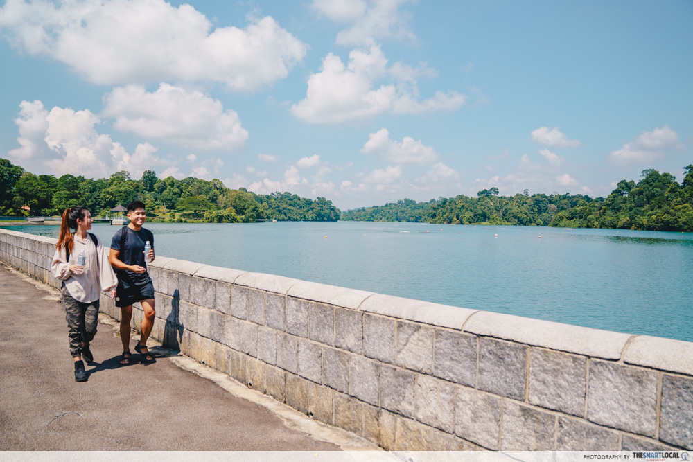 macritchie scenic path