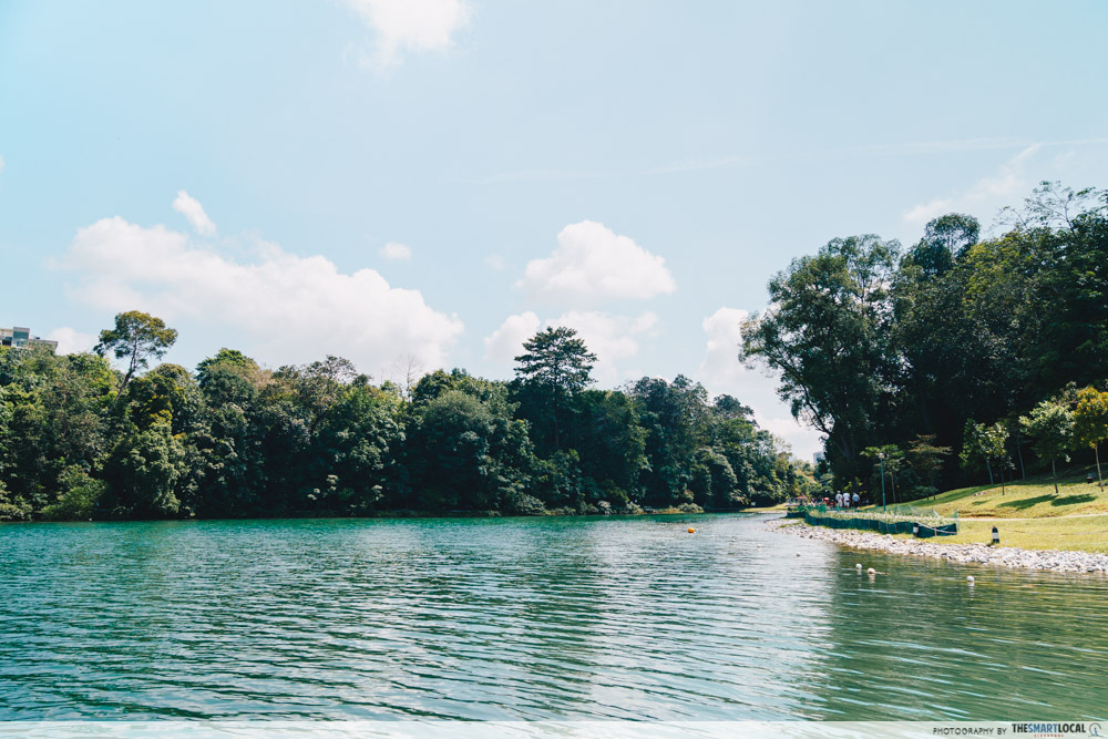 macritchie lake