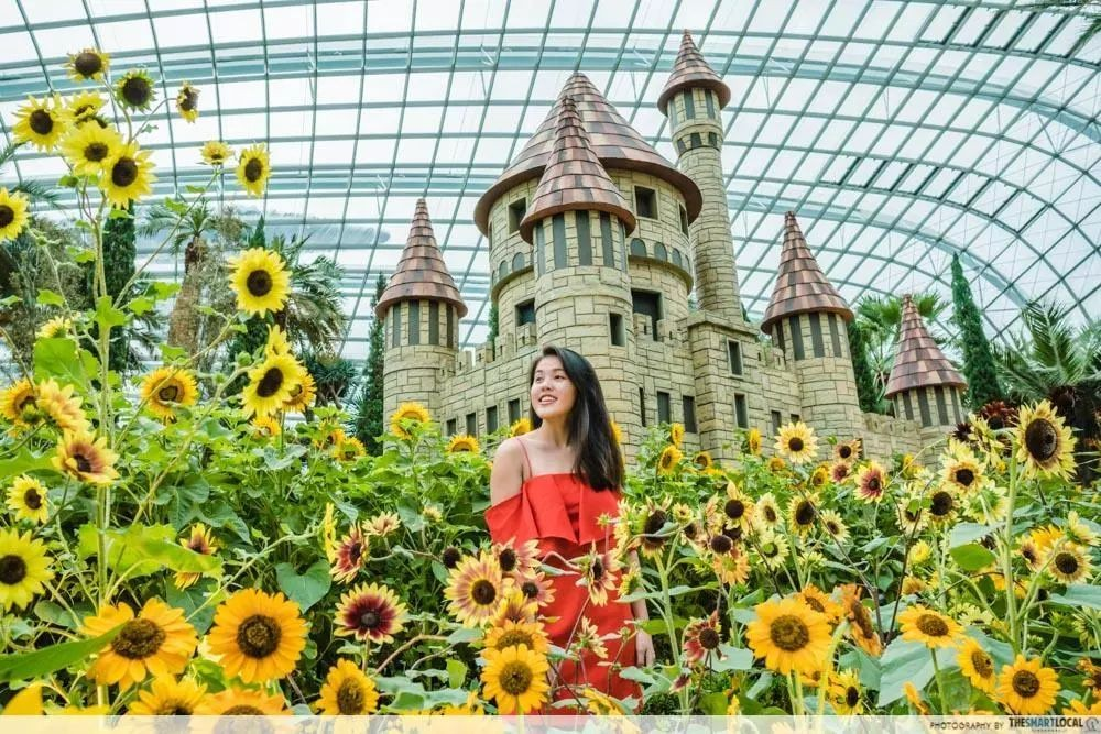 Gardens by the Bay DBS discount 2018