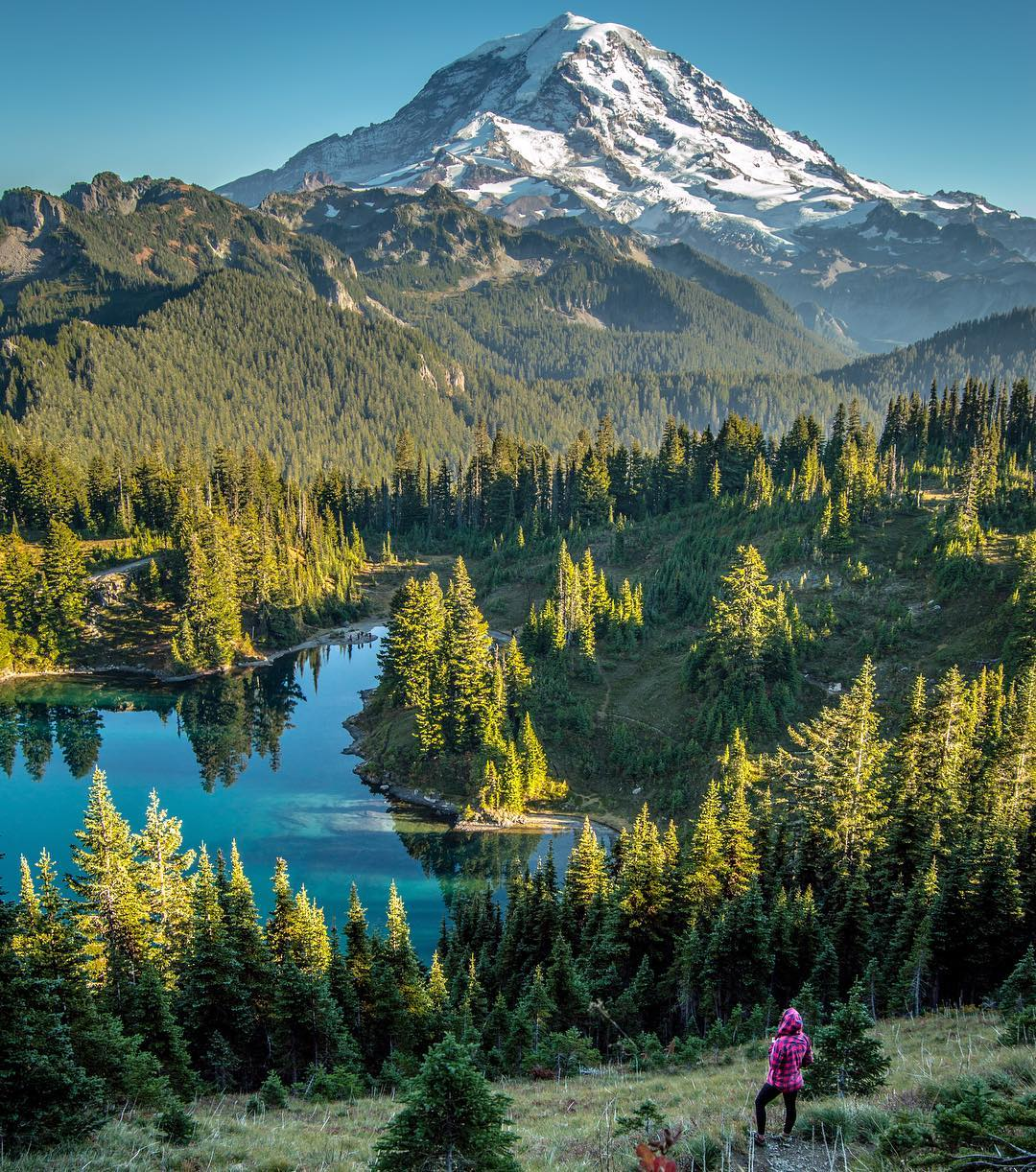 Seattle travel guide SIA - mount rainier national park