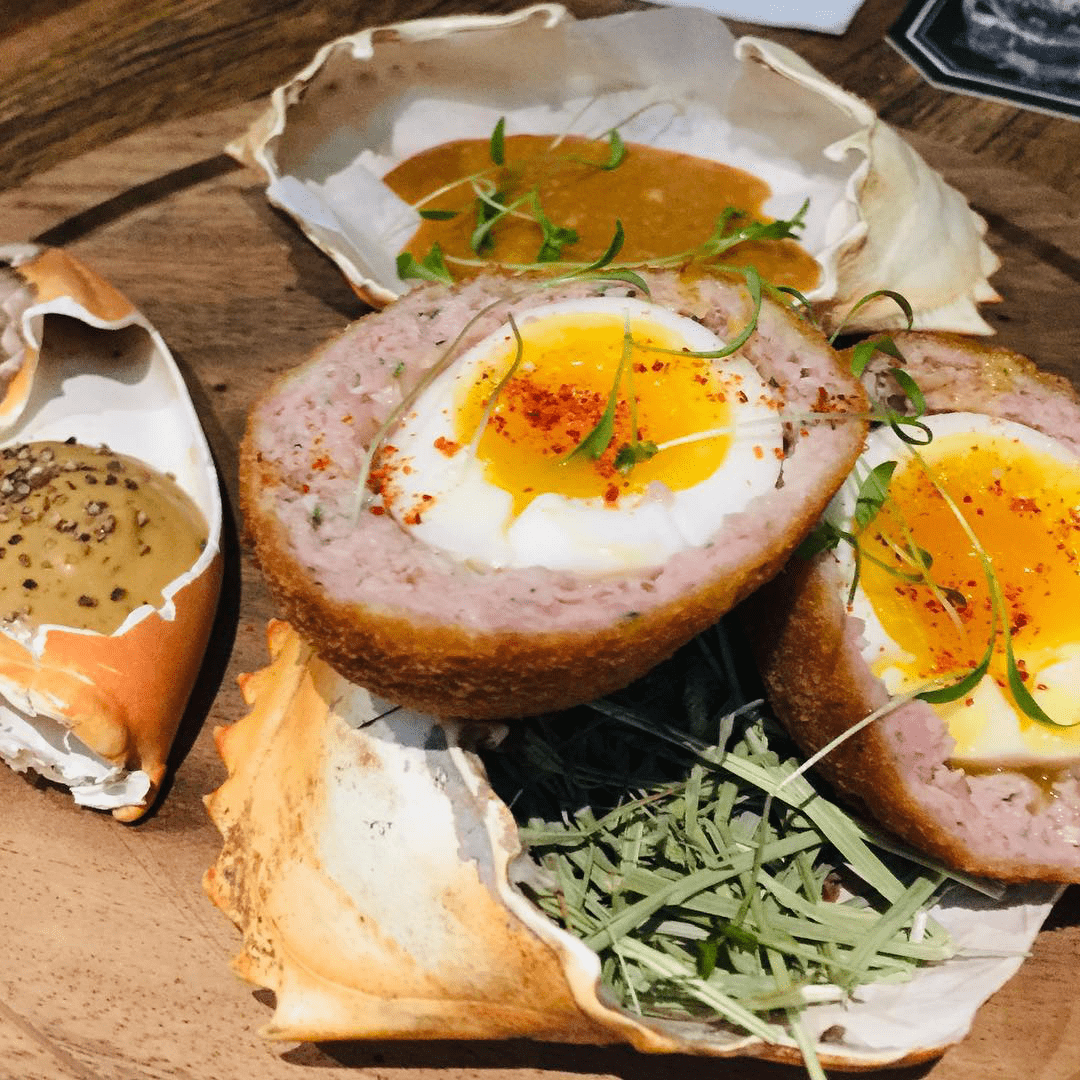 scotch egg grand champion