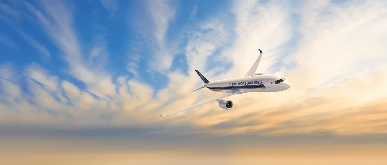 singapore airlines craft