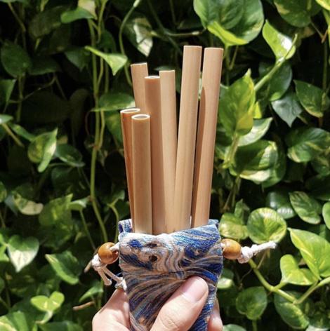 Reusable Bamboo Straws Singapore