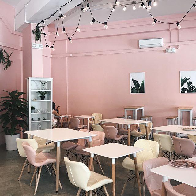 hey sugar pink walls interior