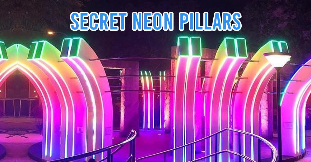 secret neon pillars in woodlands