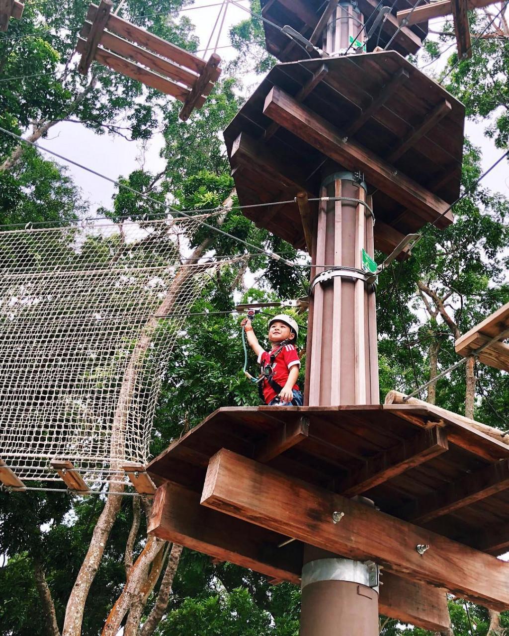 Forest Adventure Singapore