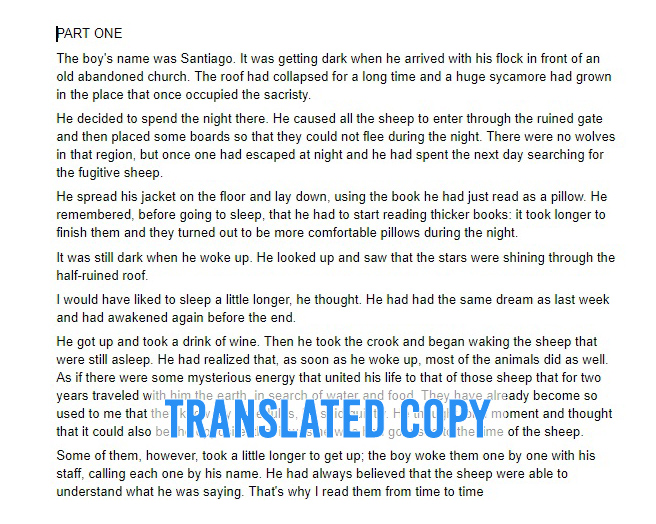 Example of translated copy