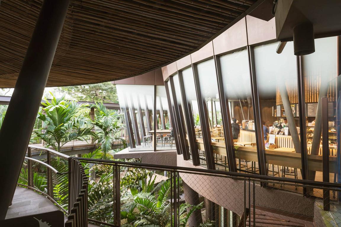 prettiest starbucks singapore outlets singapore zoo river safari