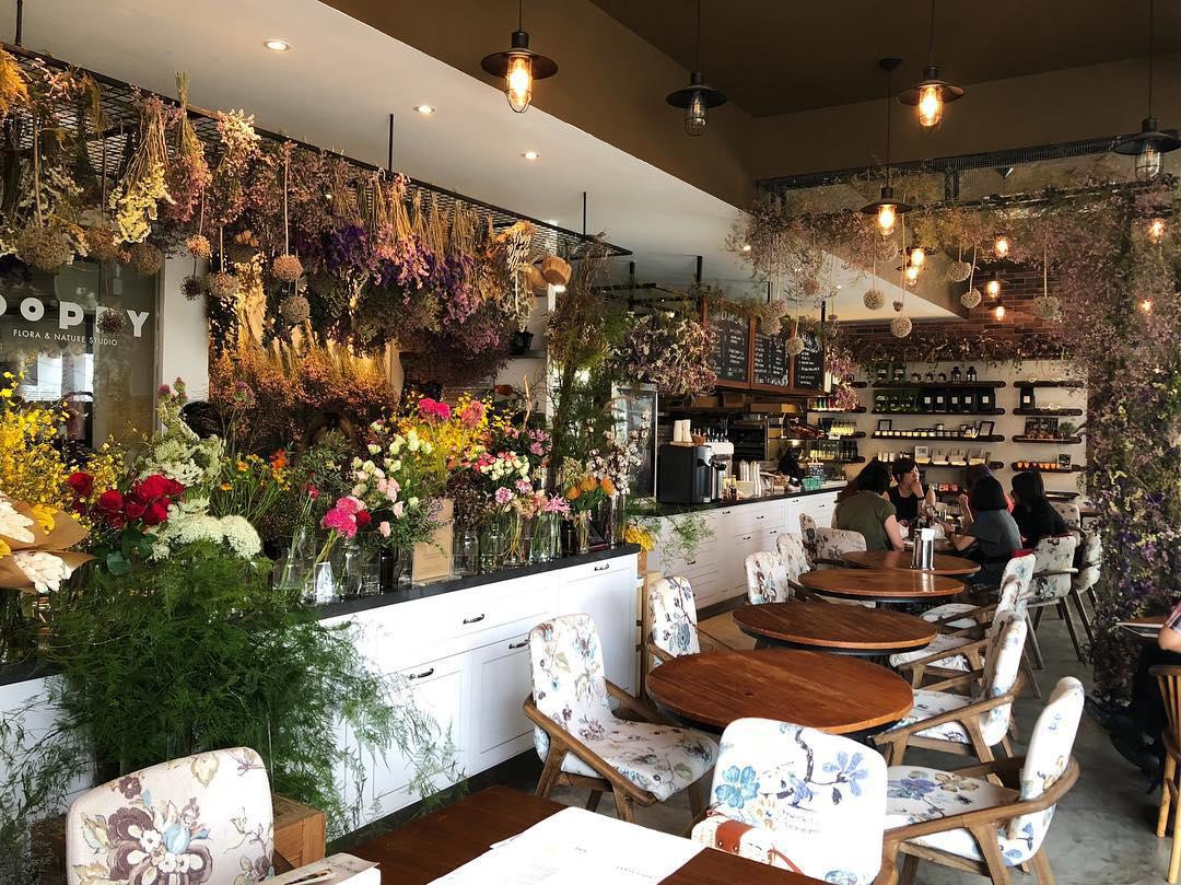 Garden themed cafes- Wildseed cafe