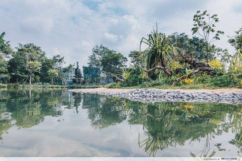 Clusia Cove Lakeside Garden