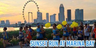 singapore marathon runs 2019