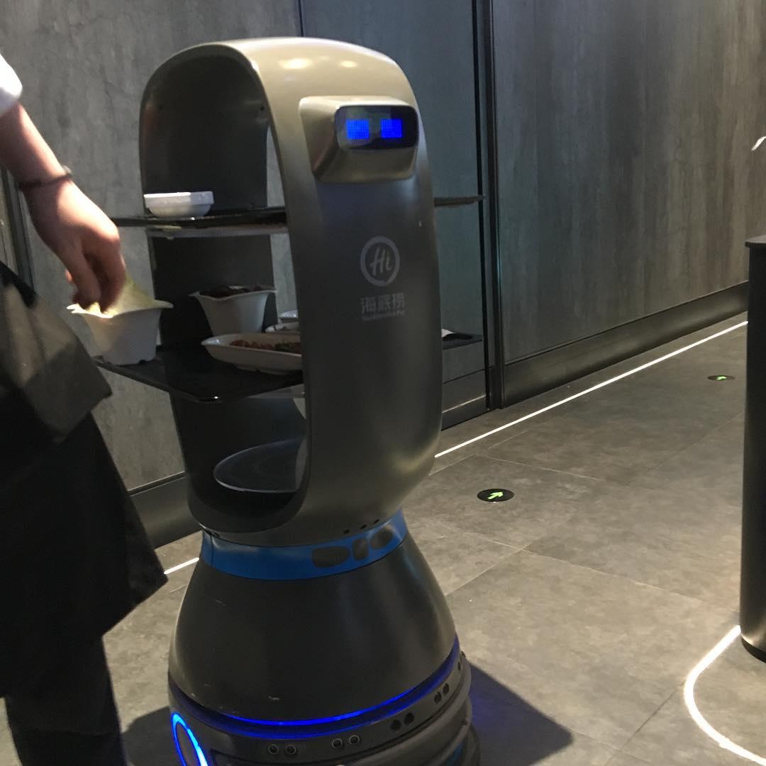 haidilao robot