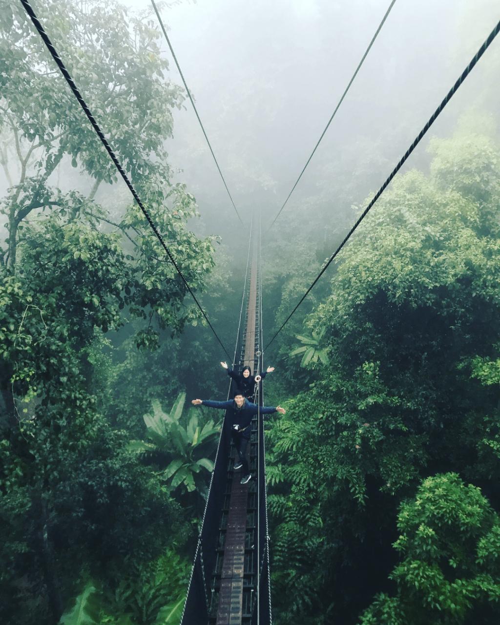 mae fah leung treetop canopy walk suspension bridge