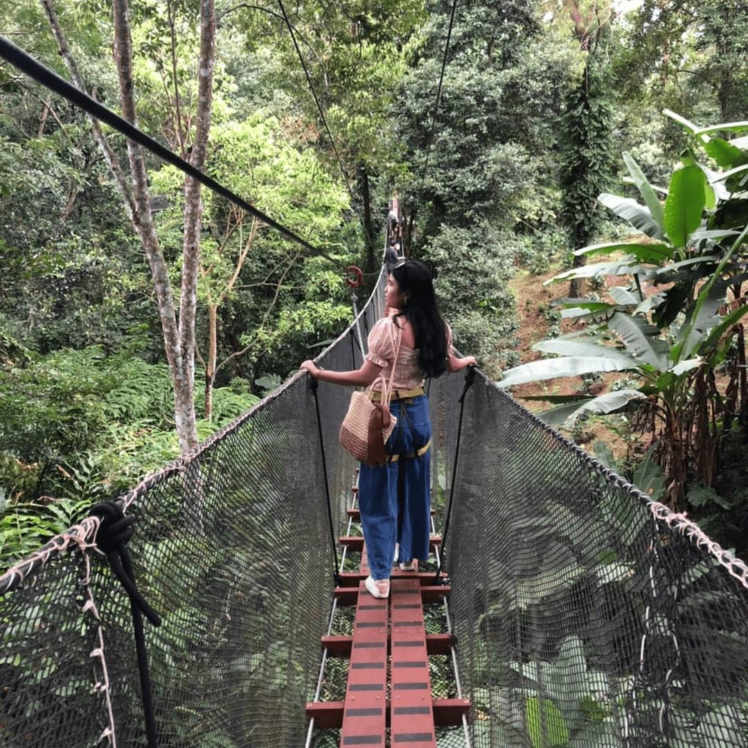 mae fah leung