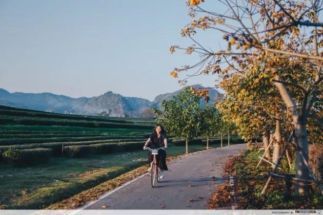 singha park cycling