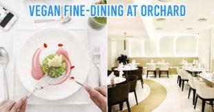 Vegan Vegetarian Restaurant for Dates cover image