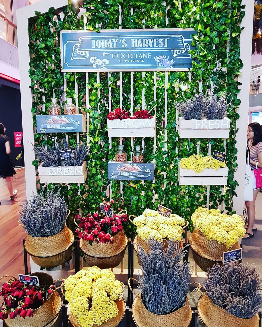 L'occitane beauty market