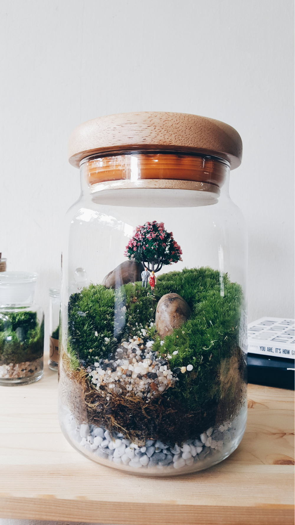 Cheap Terrariums In Out Atelier Customised Terrarium