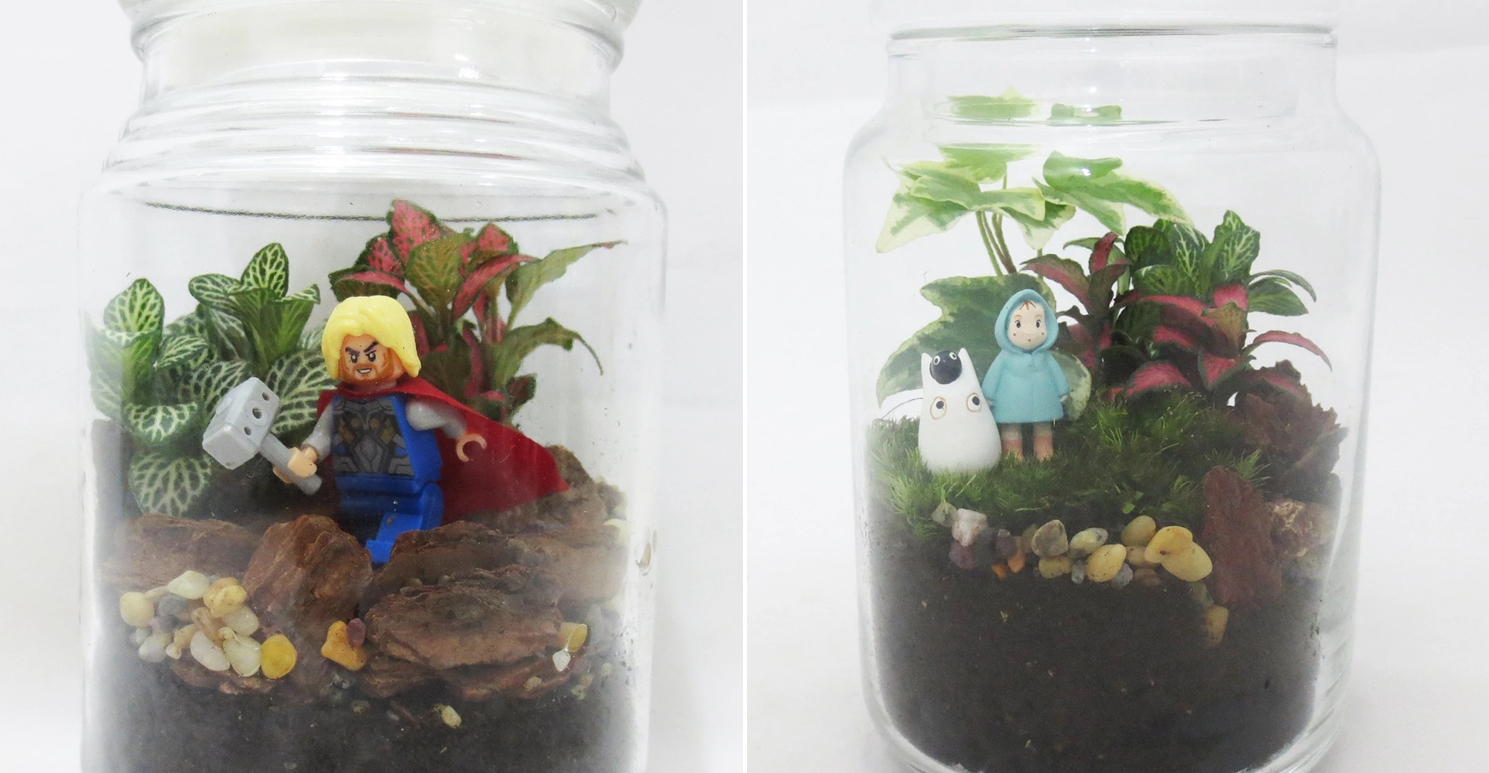 Cheap Terrariums Singapore The Green Capsule