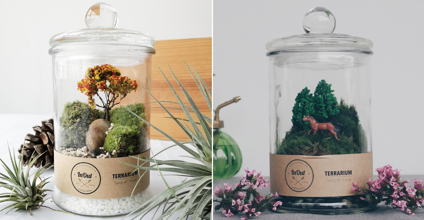 Cheap Terrariums In Out Atelier