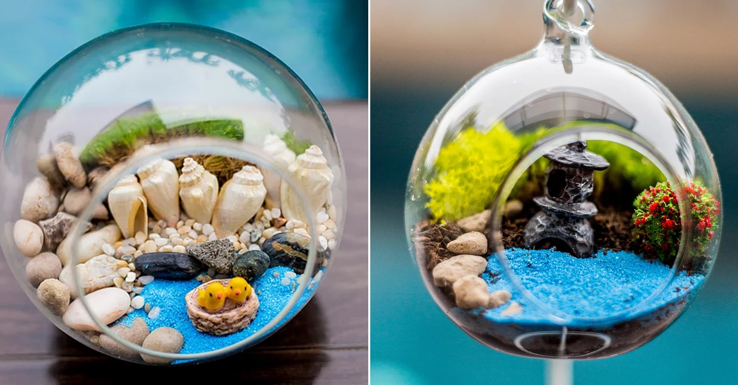 Cheap Terrariums Mosto Terrarium