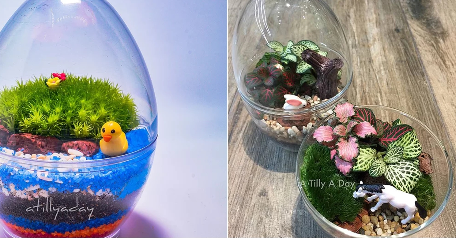 Cheap Terrariums A Tilly A Day Mini Terrarium