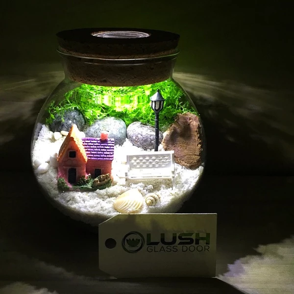 Cheap Terrariums Singapore Lush Glass Door