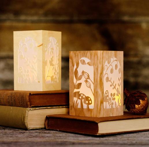 safra mt faber open house - paper lantern