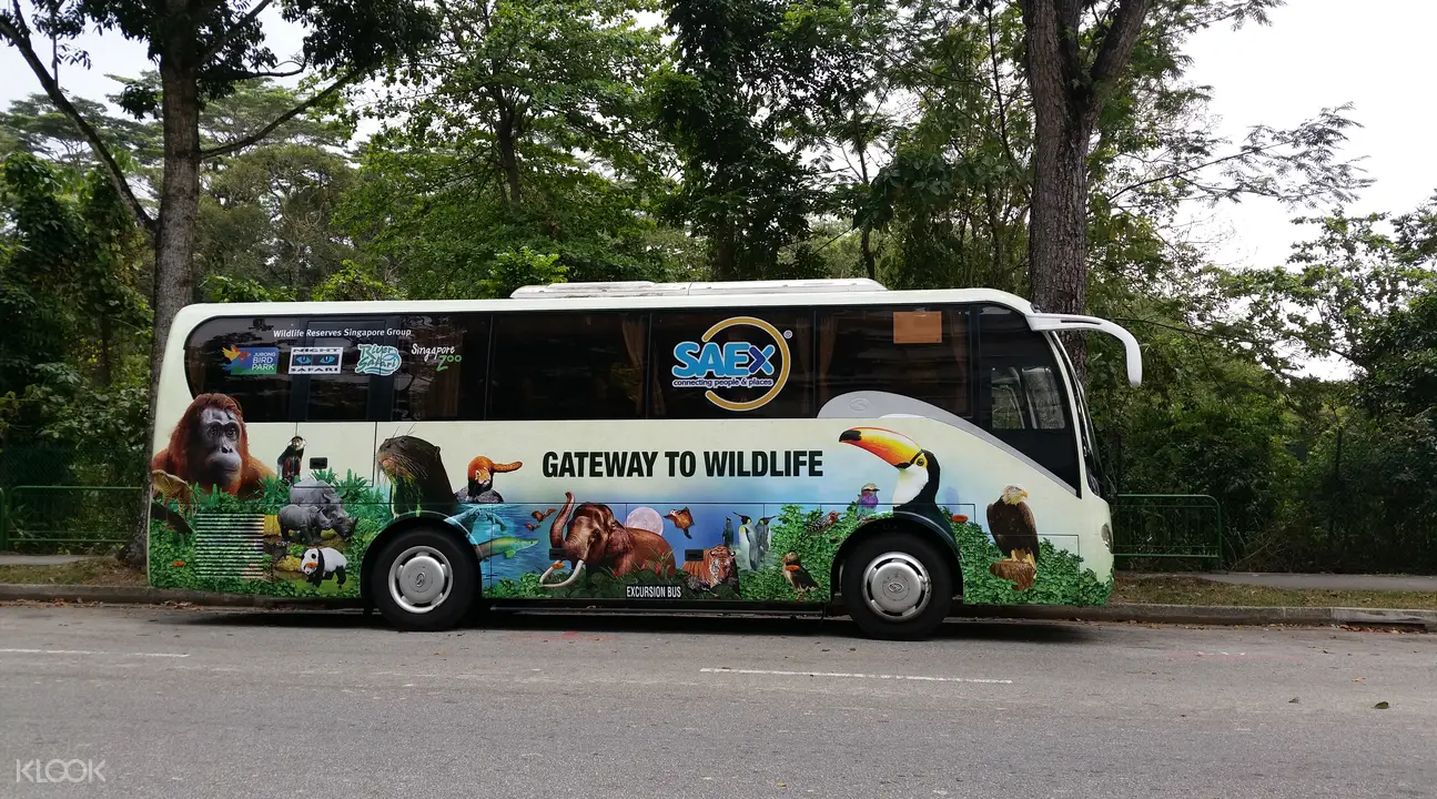 backpacking in singapore - shuttle bus to singapore zoo