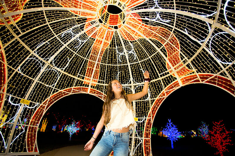 hunter valley gardens christmas lights