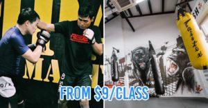 10 Cheap Martial Arts Classes In Singapore's CBD Area Below $29/Session