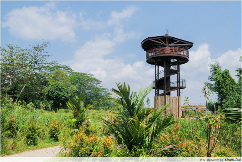 nature reserves and parks - kranji marshes