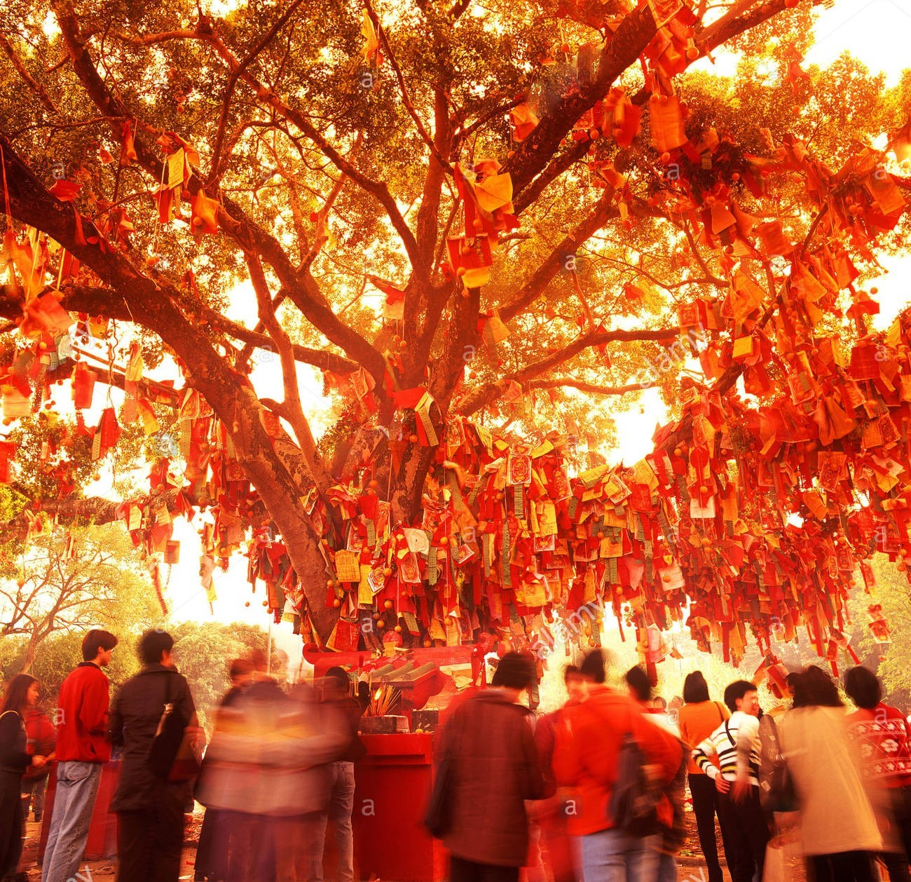 things to do in september - mid-autumn wishing tree