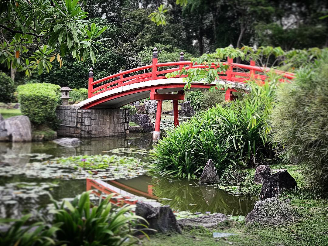 nature reserves and parks - japanese garden bridge