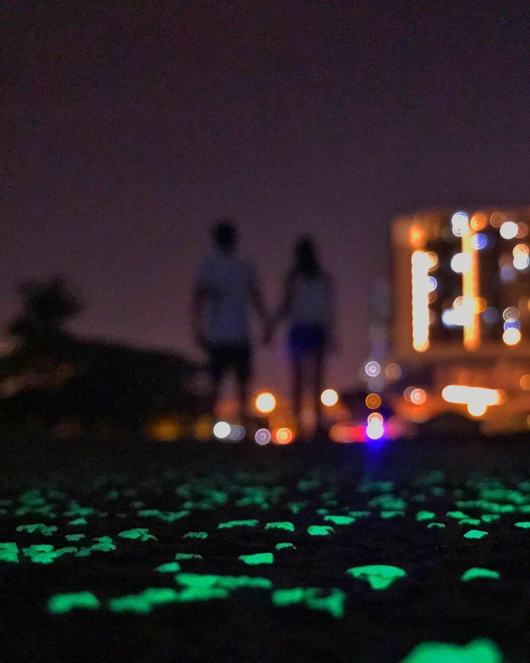 glow in the dark path