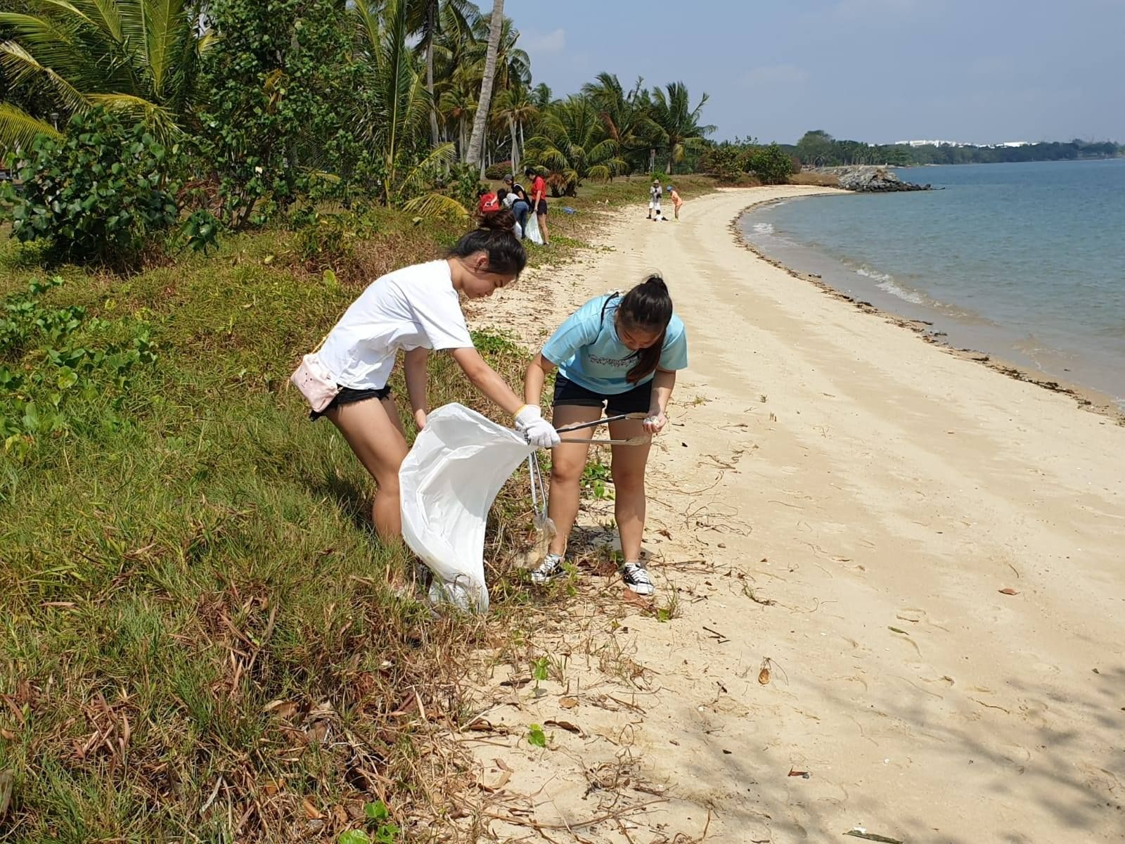 Cleanup groups to join in Singapore Blossom World Society