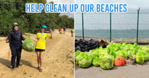Beach cleanup groups in Singapore Green Nudge