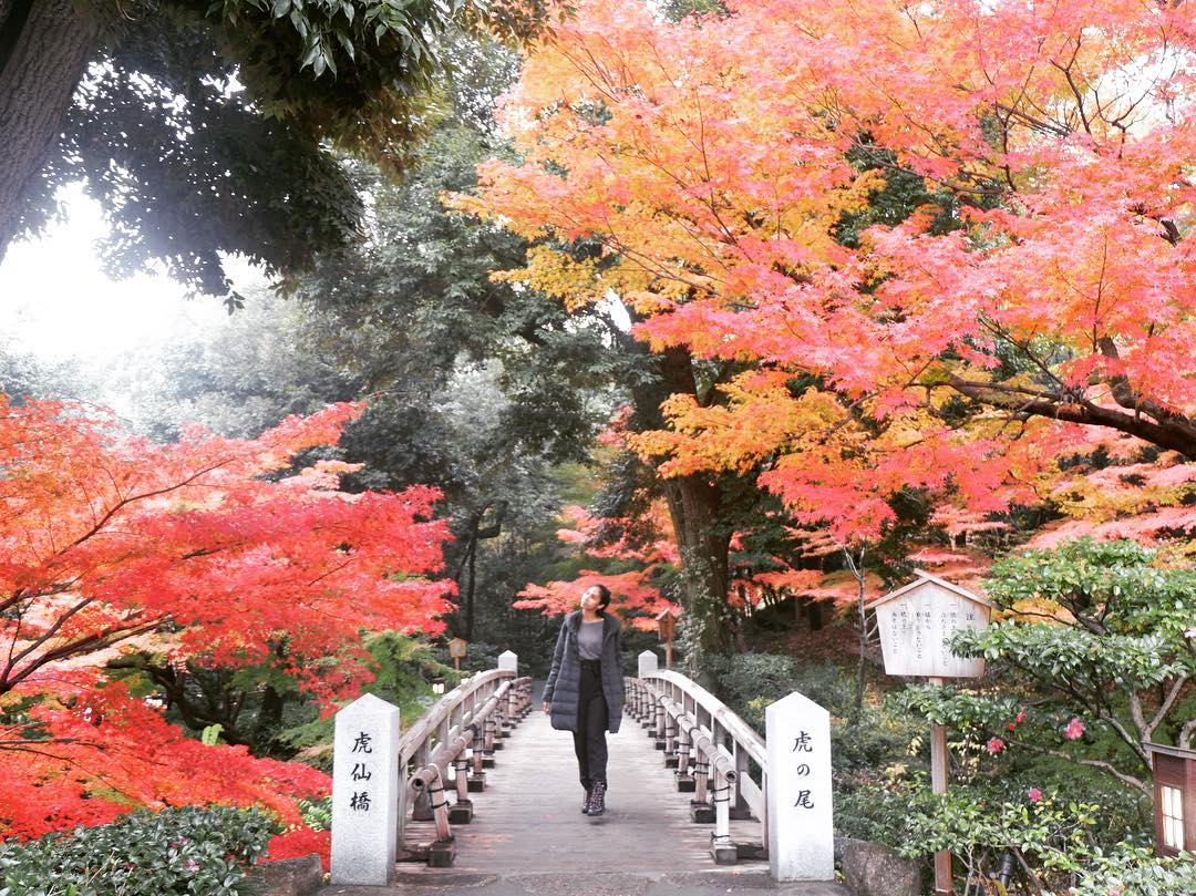 Autumn Japan 2019 korankei valley