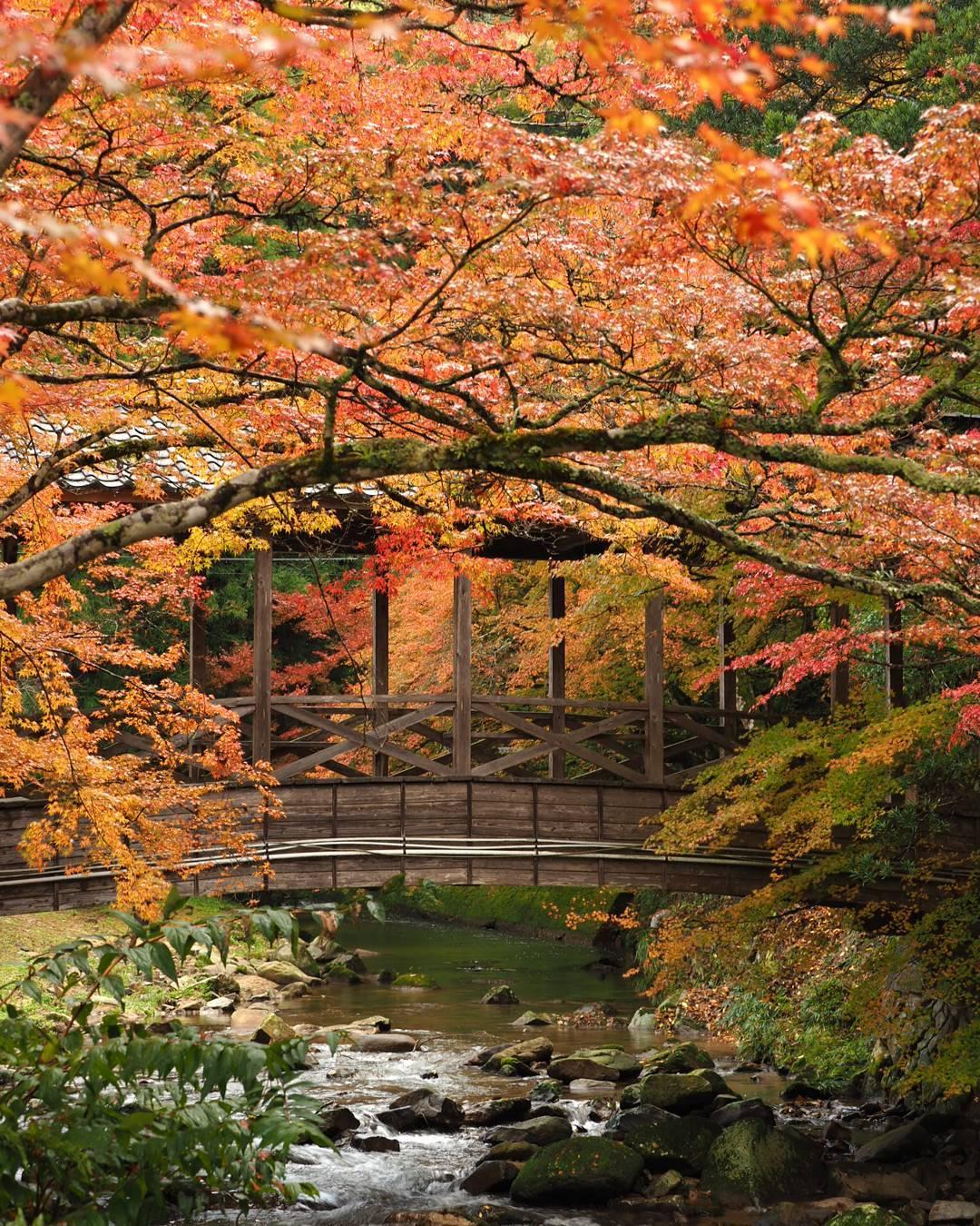 Autumn Japan 2019 hiroshima