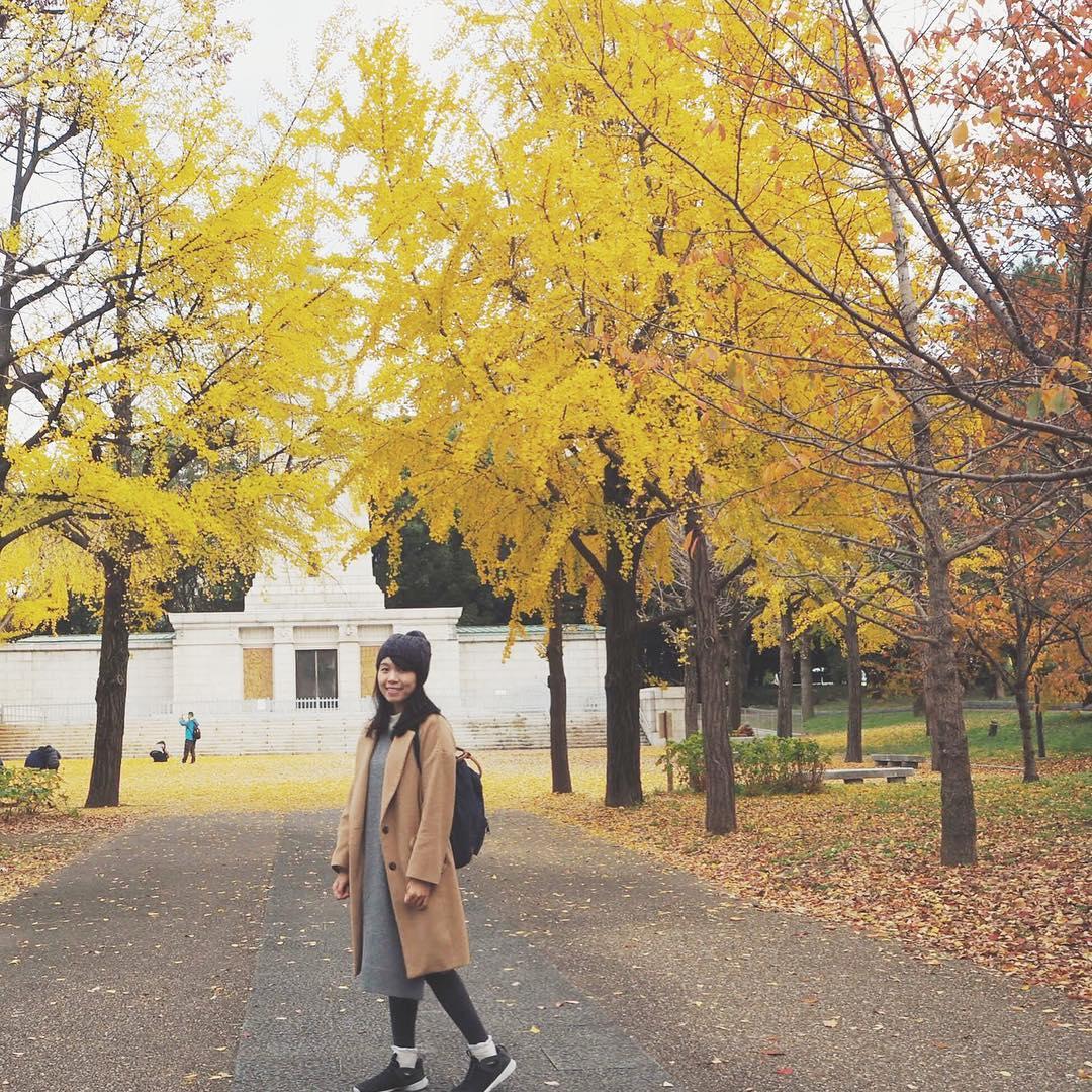 Autumn Japan 2019 gingko trees