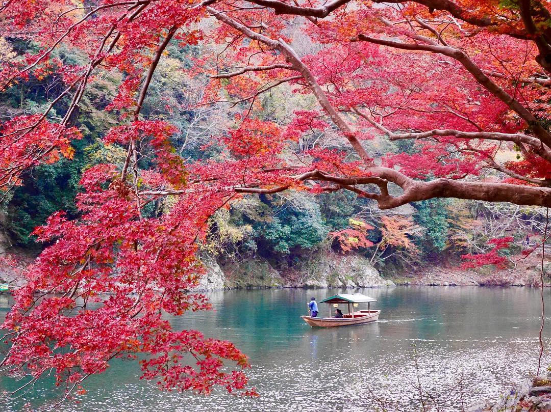 Autumn Japan 2019 arashiyama