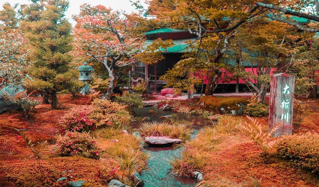 Autumn Japan 2019 kyoto