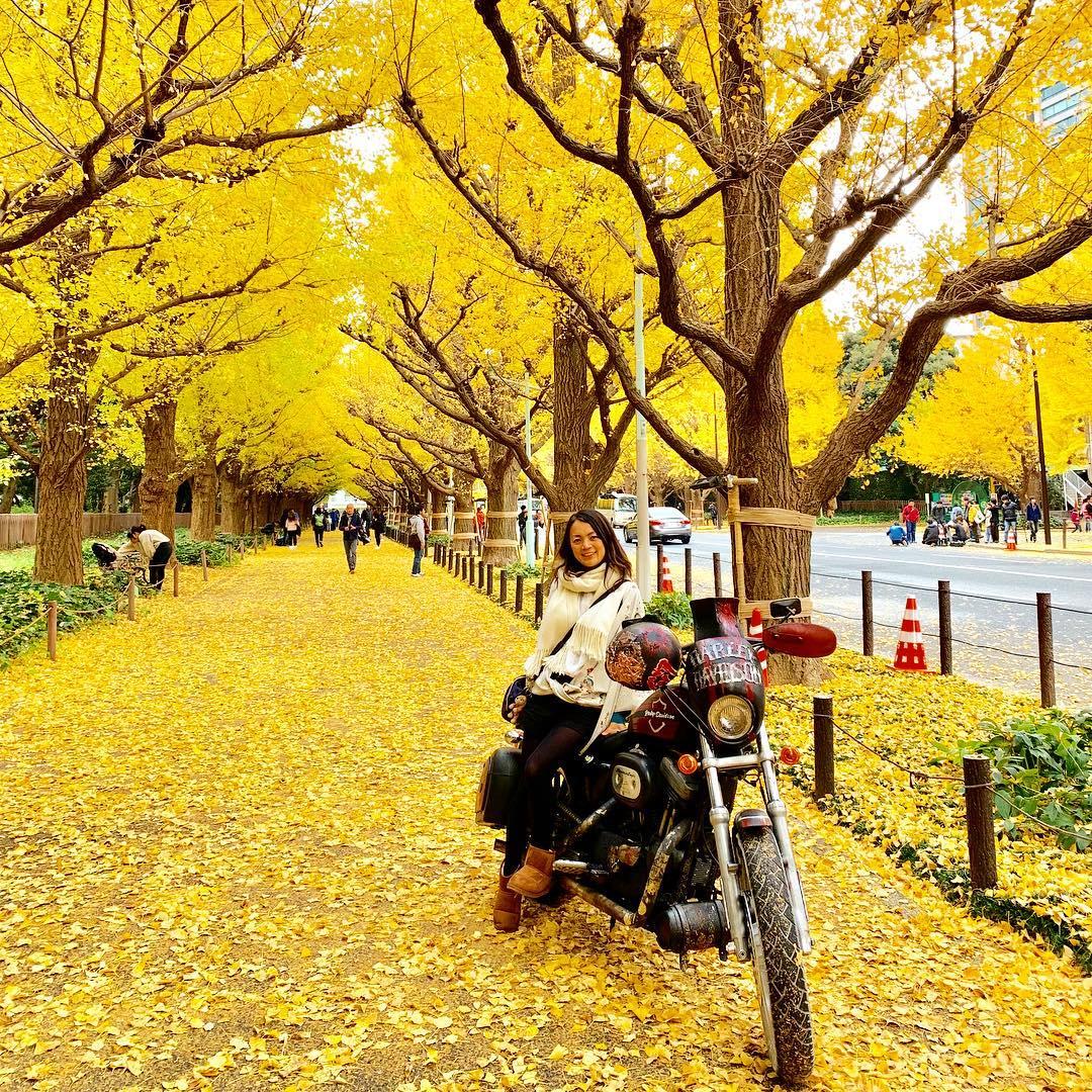 Autumn Japan 2019 tokyo